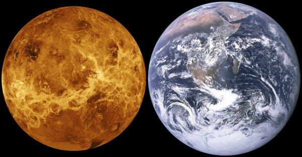 Жители России увидят сближение Луны с Венерой с 16 по 19 июня