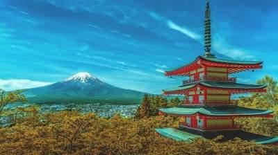 Японец вернулся домой через год после собственной кремации