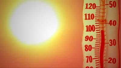 Названы главные опасности, подстерегающие человека во время жары