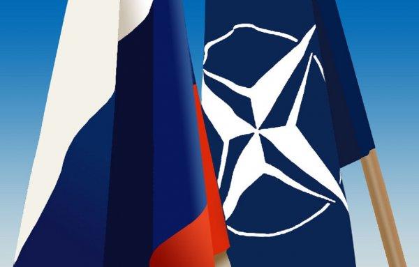 СМИ: НАТО погибло в политическом плане