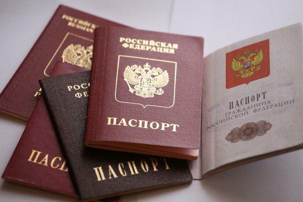 МВД работает над упрощением процедуры получения российского гражданства
