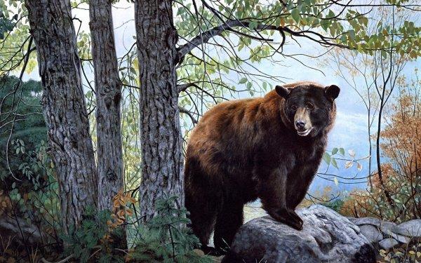 В Мурманской области медведи стали жить по православному календарю