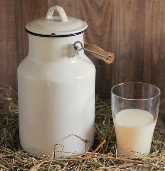Роскачество запретило называть молоко с растительным жиром молоком