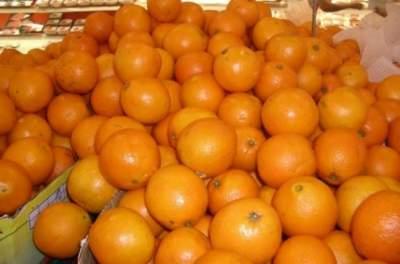 Апельсины снижают риск возрастного поражения сетчатки