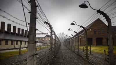 В Польше двое мужчин пытались украсть кирпичи из Освенцима
