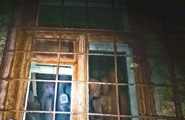 В Ростове поздно ночью увидели в доме группу «зомби»