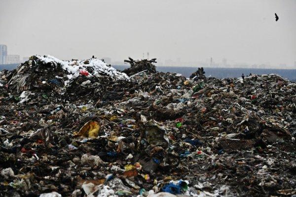 Киев находится на грани экологической катастрофы