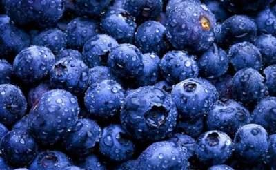 Эта ягода поможет восстановить зрение без визита к офтальмологу