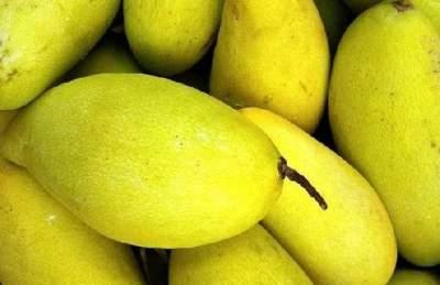Обнаружено новое полезное свойство манго