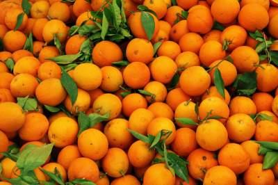 Этот вкусный фрукт поможет сохранить зрение