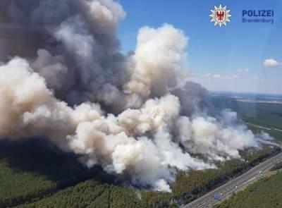 Германию охватили масштабные лесные пожары