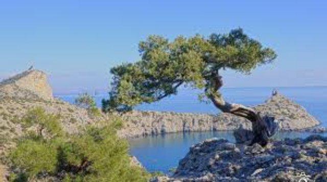 Крым - прекрасный курорт для туристов
