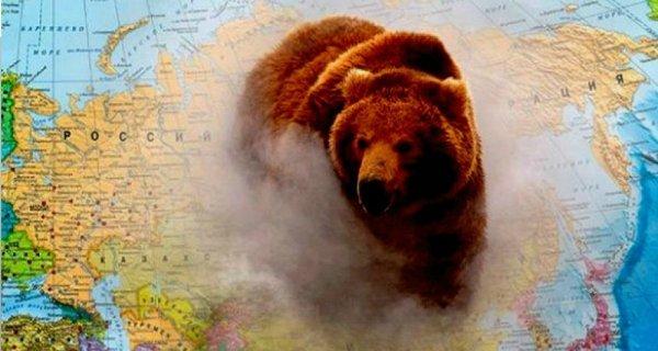 Русский медведь продемонстрировал настоящее отношение жителей Англии к России