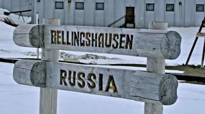 Россиянин устроил резню в Антарктиде