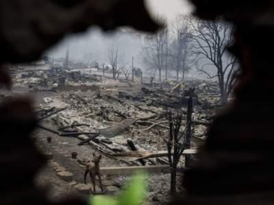 В Калифорнии пожар уничтожил более 600 домов
