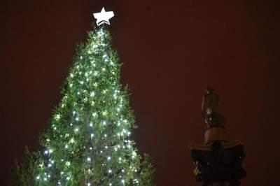 В Лондоне зажгли главную елку Великобритании
