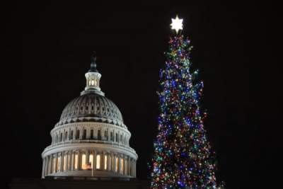 На главной елке США погасли огни