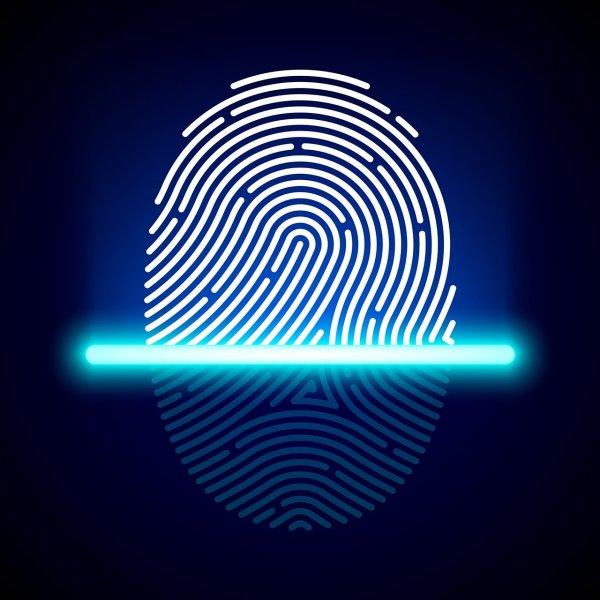 Samsung оснастил Galaxy S10 сканером отпечатков пальцев во весь экран