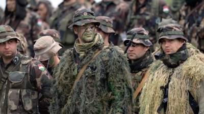 Венгрия хочет создать войска территориальной обороны