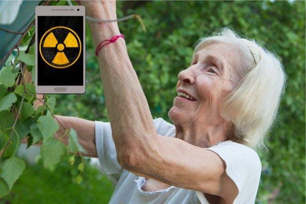 Бабушки нас обманывали: Учёные развеяли миф о вреде телефона для мозга