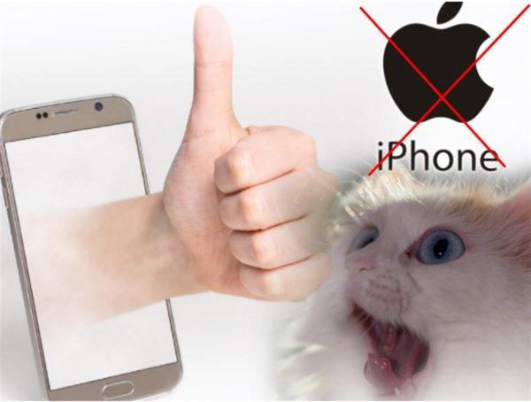 Назван «лучший смартфон 2019», и это не Apple