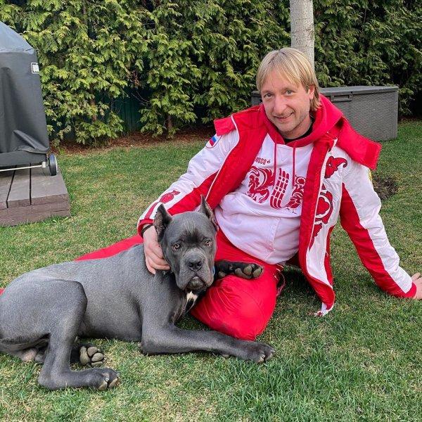 Коллеги Плющенко не удивлены его назначением тренером сборной России